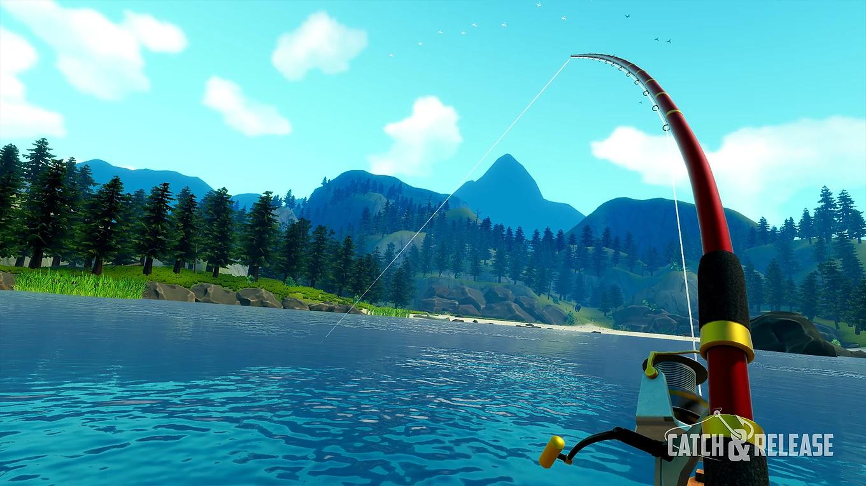 Catch & Release Fish Bites the bait