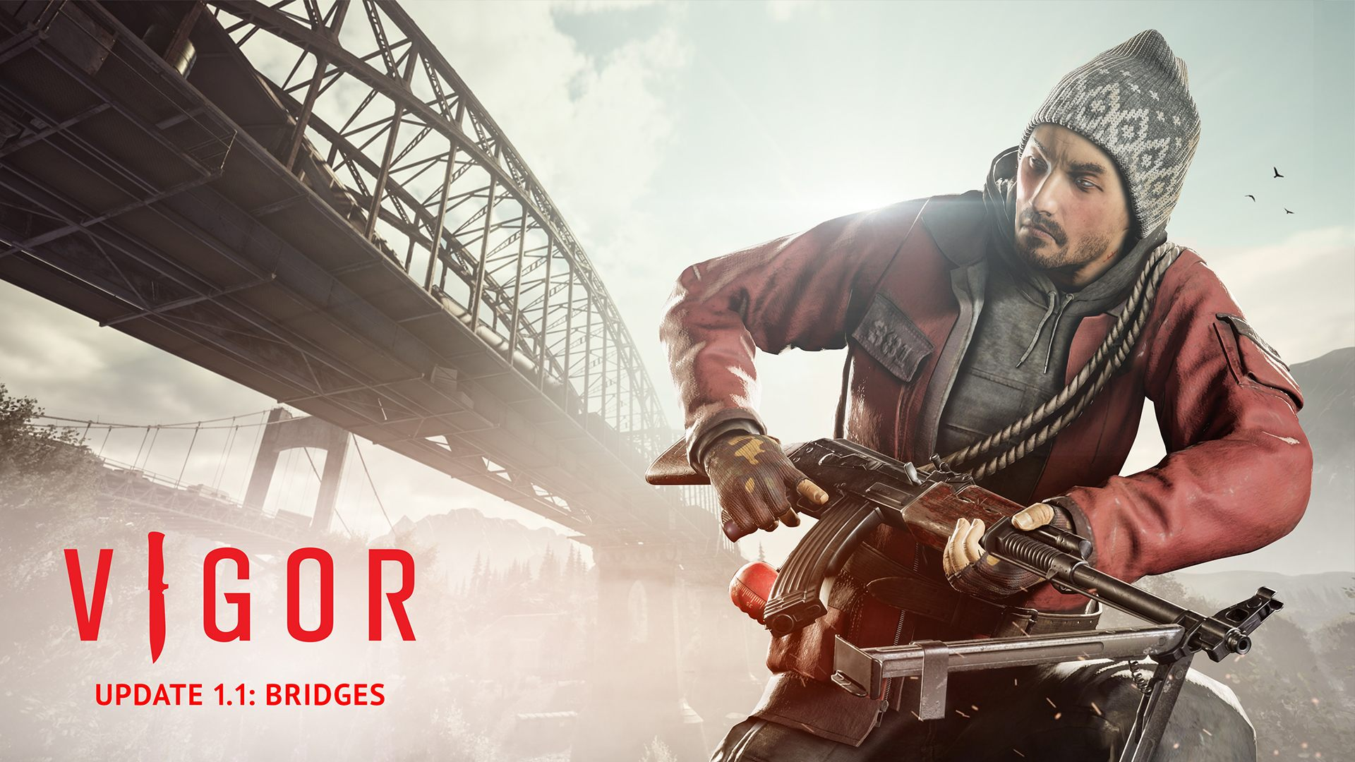 Vigor Update 1.1 Bridges